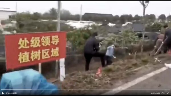 """南宁植树设""""处级领导专区""""惹议 让""""小王""""背锅"""
