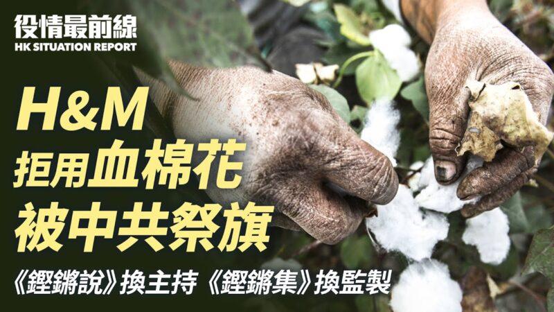 【役情最前线】H&M拒新疆棉花 遭中共祭旗