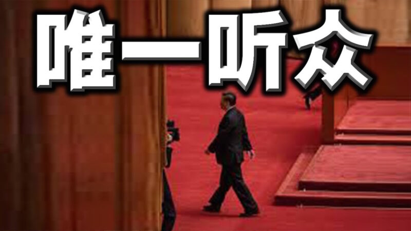 外媒揭秘:杨洁篪倾情表演,只有一个观众