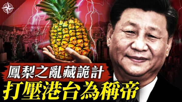 【十字路口】中国禁台湾凤梨 暗藏统战三部曲