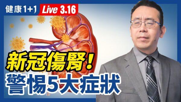 【重播】新冠伤肾 警惕5症状 远离肾脏病有方法