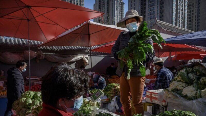 1300斤菠菜15元 地頭賤菜市貴 錢被誰賺了?