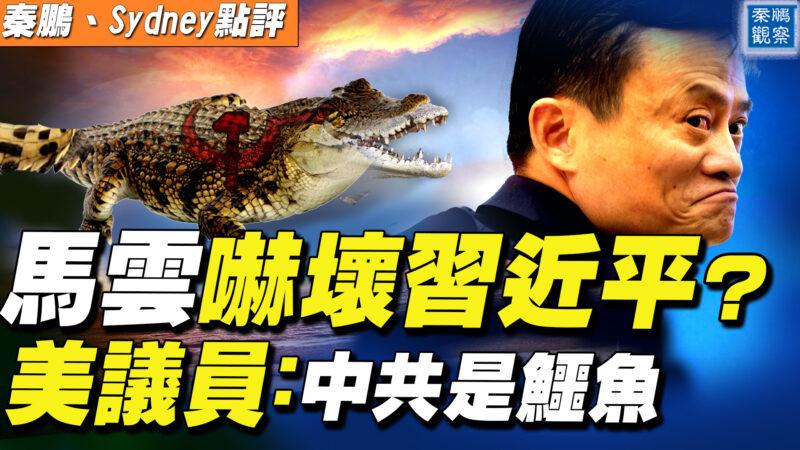 【秦鹏直播】马云吓坏习近平? 美议员:中共是鳄鱼