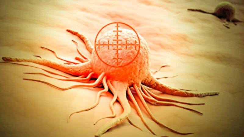 人人體內都有癌細胞 怎樣才能不患癌症?