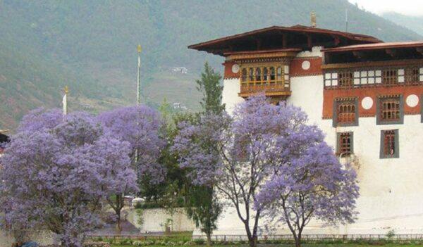 不丹小王子前世曾为中国僧人
