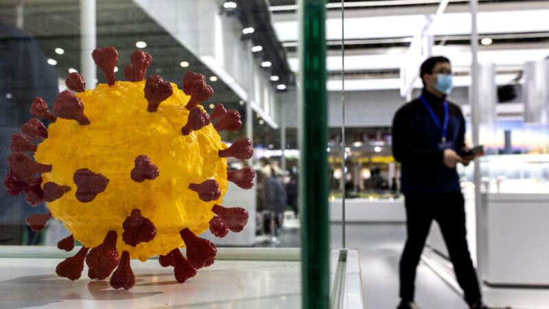 中國多地驚現印度變異毒株 網友:病毒回娘家了