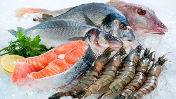 鱼虾不要直接放冰箱?海鲜正确保存、挑选才新鲜