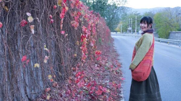 拍疫情照 北京畫家等11人被抓 律師譴中共