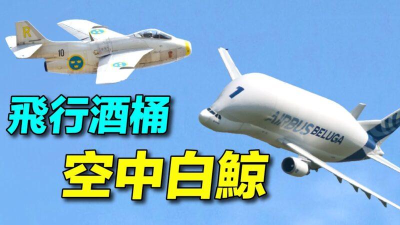 【探索时分】史上五大最萌的飞机