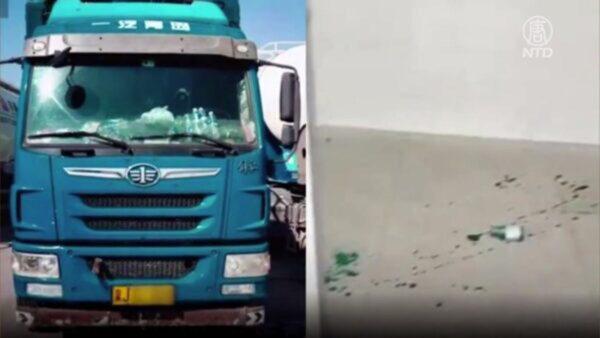 张杰:卡车司机金德强与马云真的同人不同命吗?