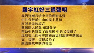 【禁聞】5月9日退黨精選