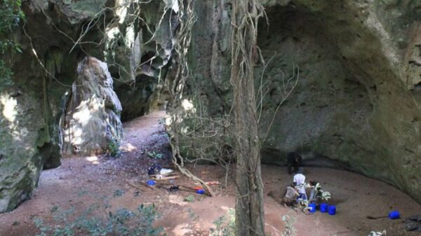 非洲驚現最古老人類墓葬 科學家:一個約8萬年前的孩子