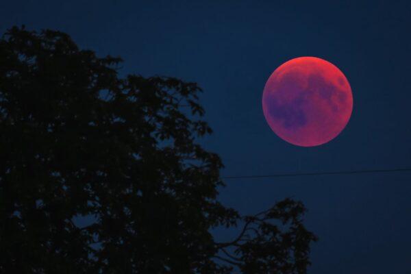 """超级""""血月""""要来了 何时何地一睹为快"""