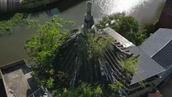 广东500年古佛塔顶 离奇长出百年榕树(视频)