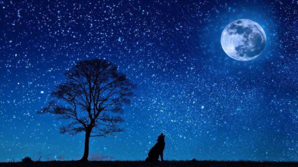"""月球在夜空中不断""""变脸""""的缘由"""