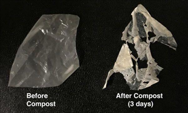 新型塑料问世 温水浸泡即降解成为肥料