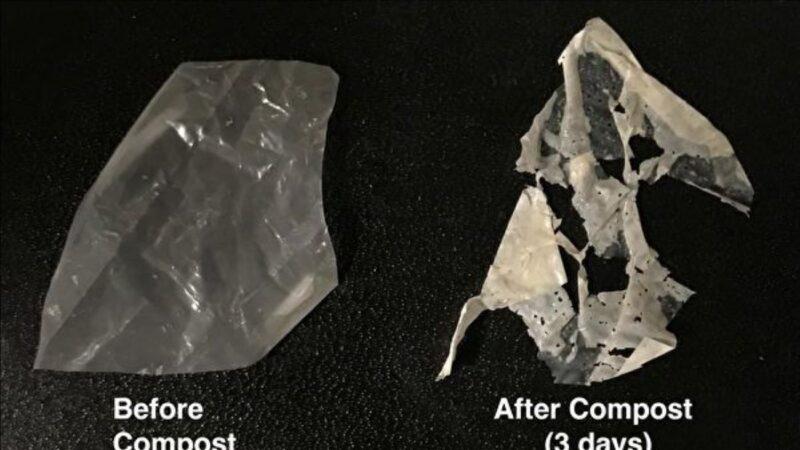 新型塑料問世 溫水浸泡即降解成為肥料