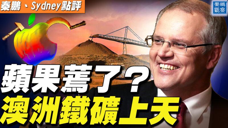 【秦鹏直播】苹果蔫了? 澳洲铁矿上天