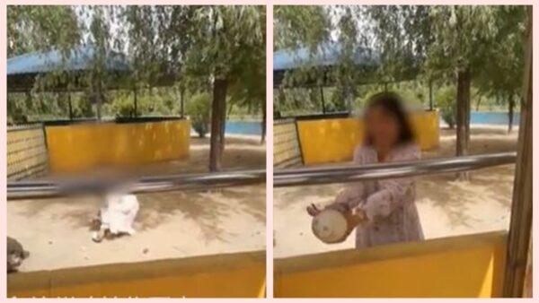 山东女游动物园 翻墙偷鸵鸟蛋引热议