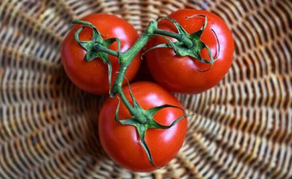 番茄防癌、减肥又增免疫力 这样吃最营养