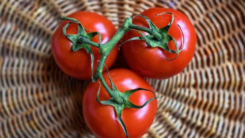 番茄防癌、減肥又增免疫力 這樣吃最營養