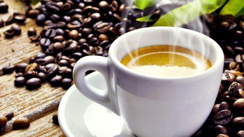咖啡基本入门知识