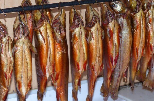 """""""一级致癌鱼""""是真的?这种鱼劝你少吃点"""