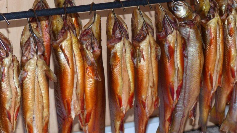 「一級致癌魚」是真的?這種魚勸你少吃點