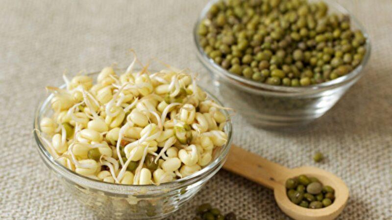居家必備的3種食物 能長久存放 還增免疫力
