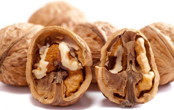 6種抗疲勞食物:腦累吃核桃 腎累吃啥?
