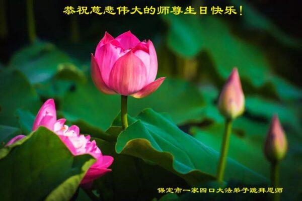 保定法轮功学员恭贺世界法轮大法日暨李洪志大师华诞(27条)