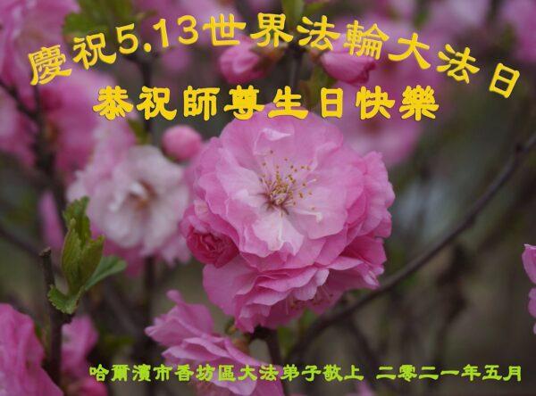 哈爾濱法輪功學員恭賀世界法輪大法日暨李洪志大師華誕(23條)