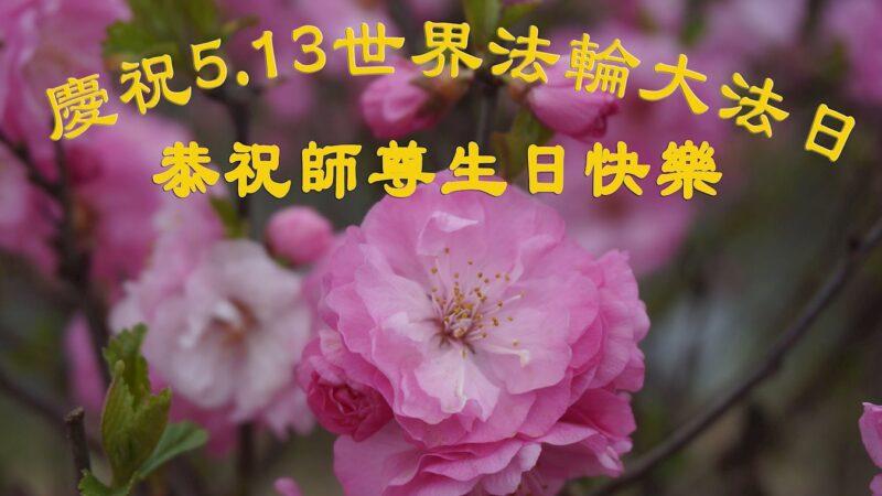 哈尔滨法轮功学员恭贺世界法轮大法日暨李洪志大师华诞(23条)