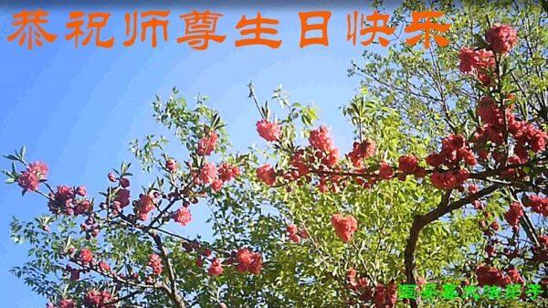 廊坊法轮功学员恭贺世界法轮大法日暨李洪志大师华诞(18条)