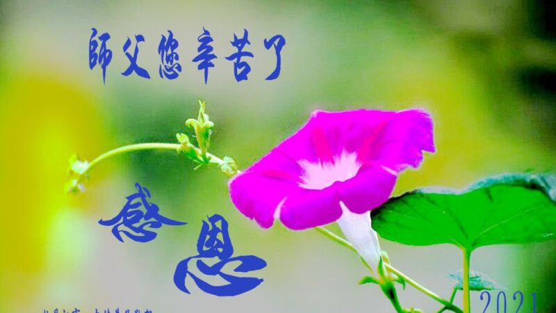 黑龙江法轮功学员恭贺世界法轮大法日暨李洪志大师华诞(25条)