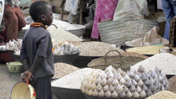 农作物价格飙升致肉价上涨 经济学家: 好在大米稳定