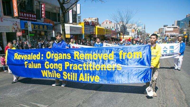 【名家專欄】該禁止「器官移植旅行」了