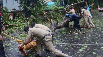 热带气旋强袭印度 树木连根拔起酿8死23失踪