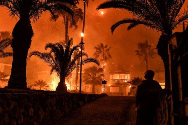 希腊雅典大火烧毁逾半森林 恐酿生态浩劫