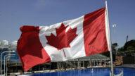 打擊器官販賣 加拿大參議院通過法案