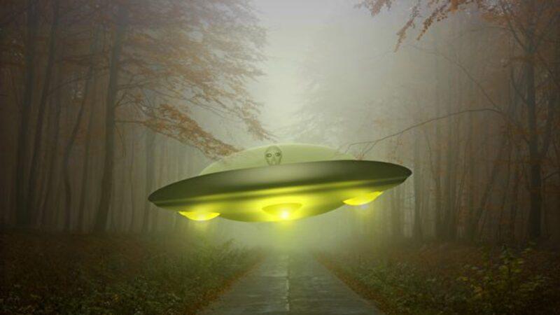 30公分高的外星人走上街道 嚇壞目擊者(視頻)