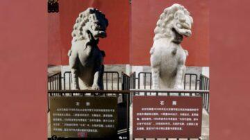袁斌:北京石獅「改口」 文革要翻案的信號?