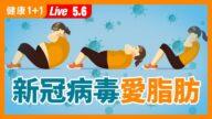 【重播】新冠病毒愛脂肪?正確減肥防中招!