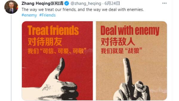 中共大使貼侮辱手勢自稱戰狼 台灣前官員發文嘲諷