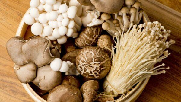 菇類可增強免疫力 每天吃還能降45%罹癌風險