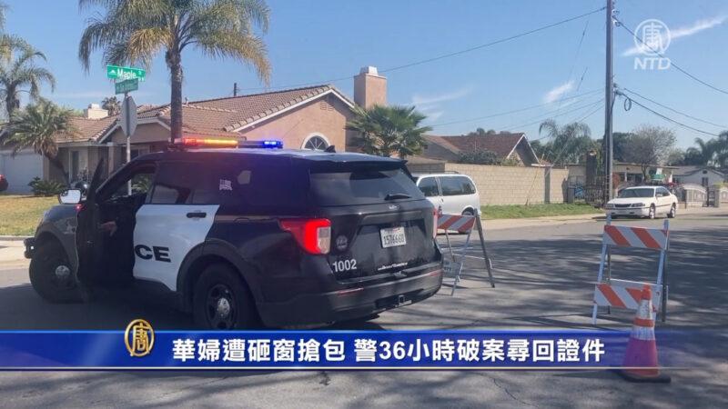 华妇遭砸窗抢包 警36小时破案寻回证件