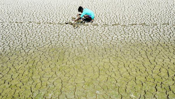 全球警示糧食短缺 300年前的預言要應驗?
