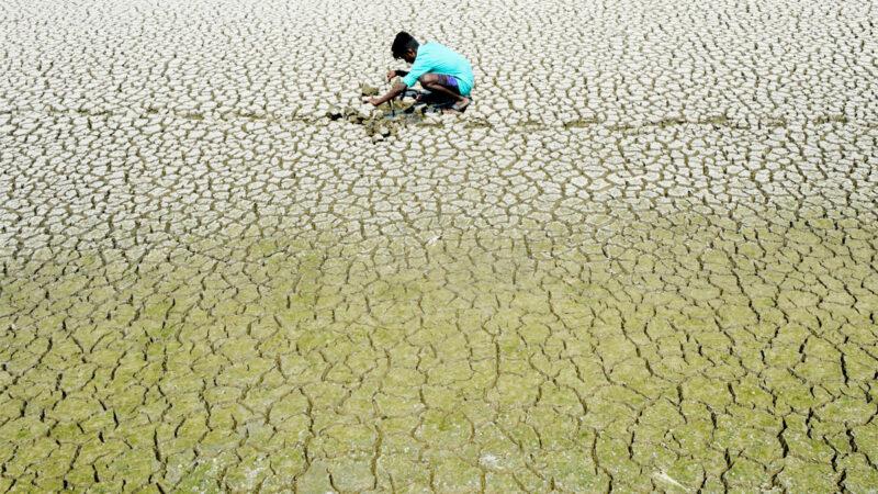 全球警示粮食短缺 300年前的预言要应验?