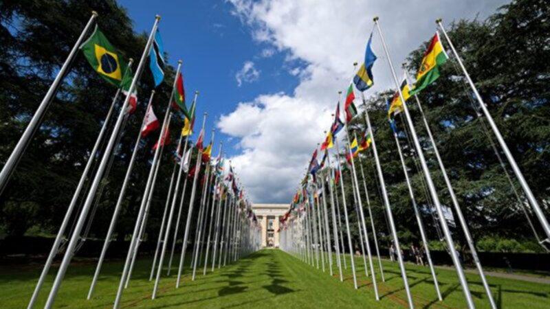 聯合國專家獲可靠消息:中共強摘少數族群器官