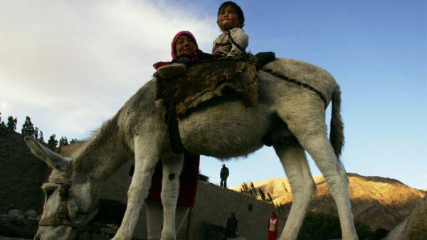 北京施压巴基斯坦 最近逃亡维族人恐遭驱逐